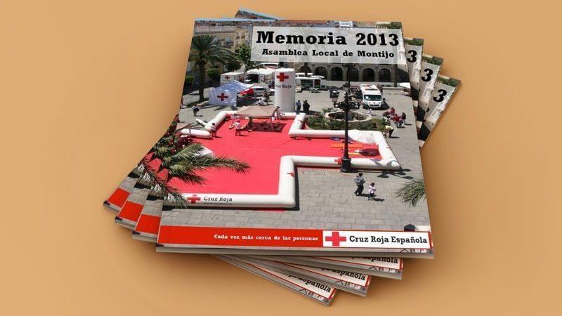 Memoria anual 2013 de Organización Local